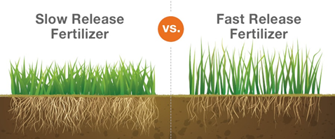 Slow Release and Fast Release Fertilizer