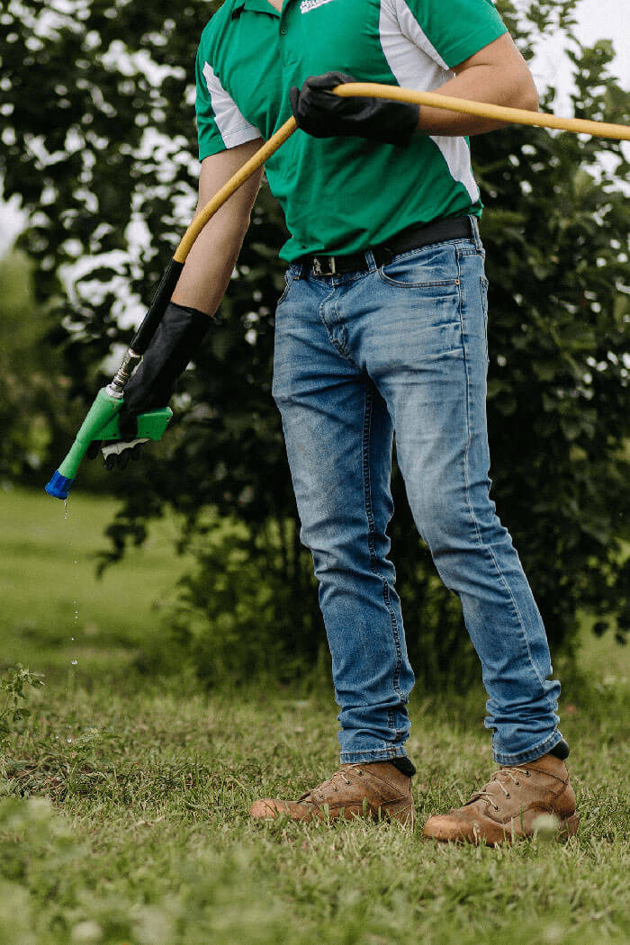 weed-control_lawn-care-watering